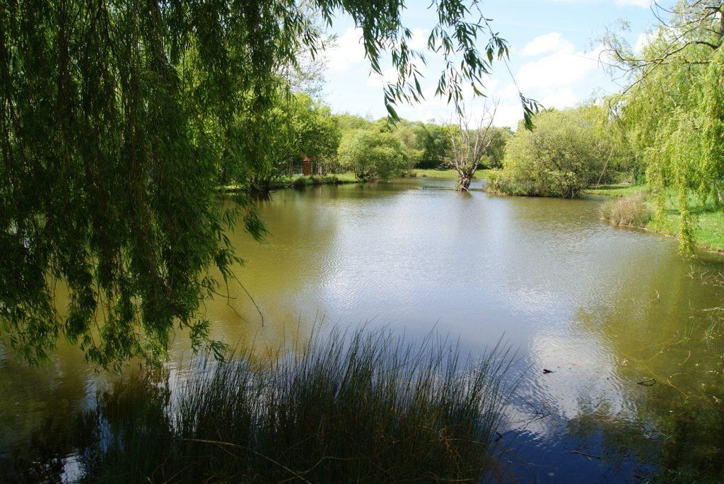 Camping avec étang de pêche